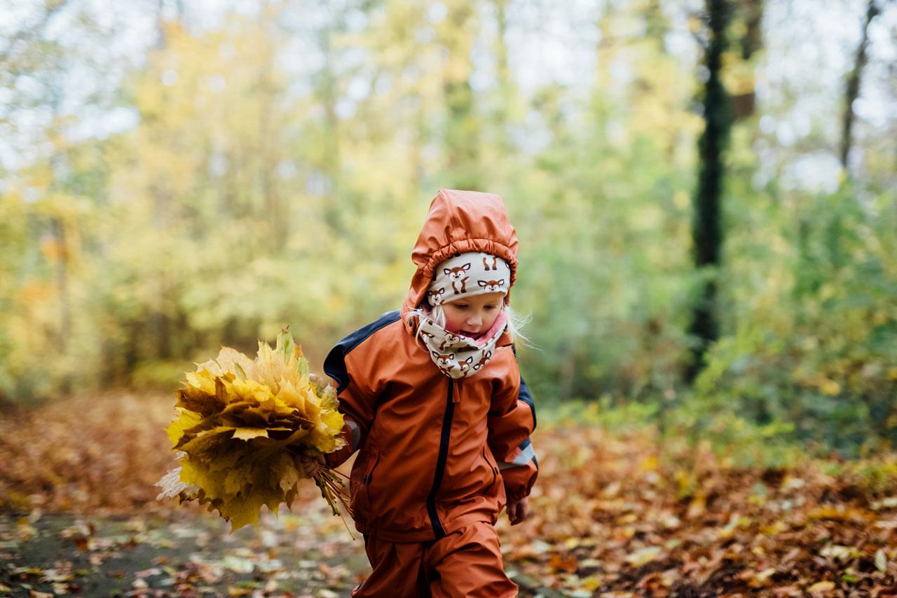 Kind sammelt Laubblätter im Wald