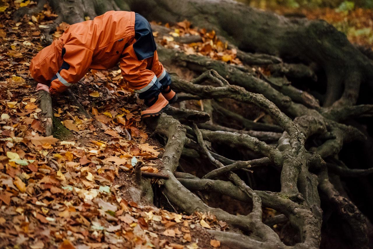 Kind klettert auf Wurzeln