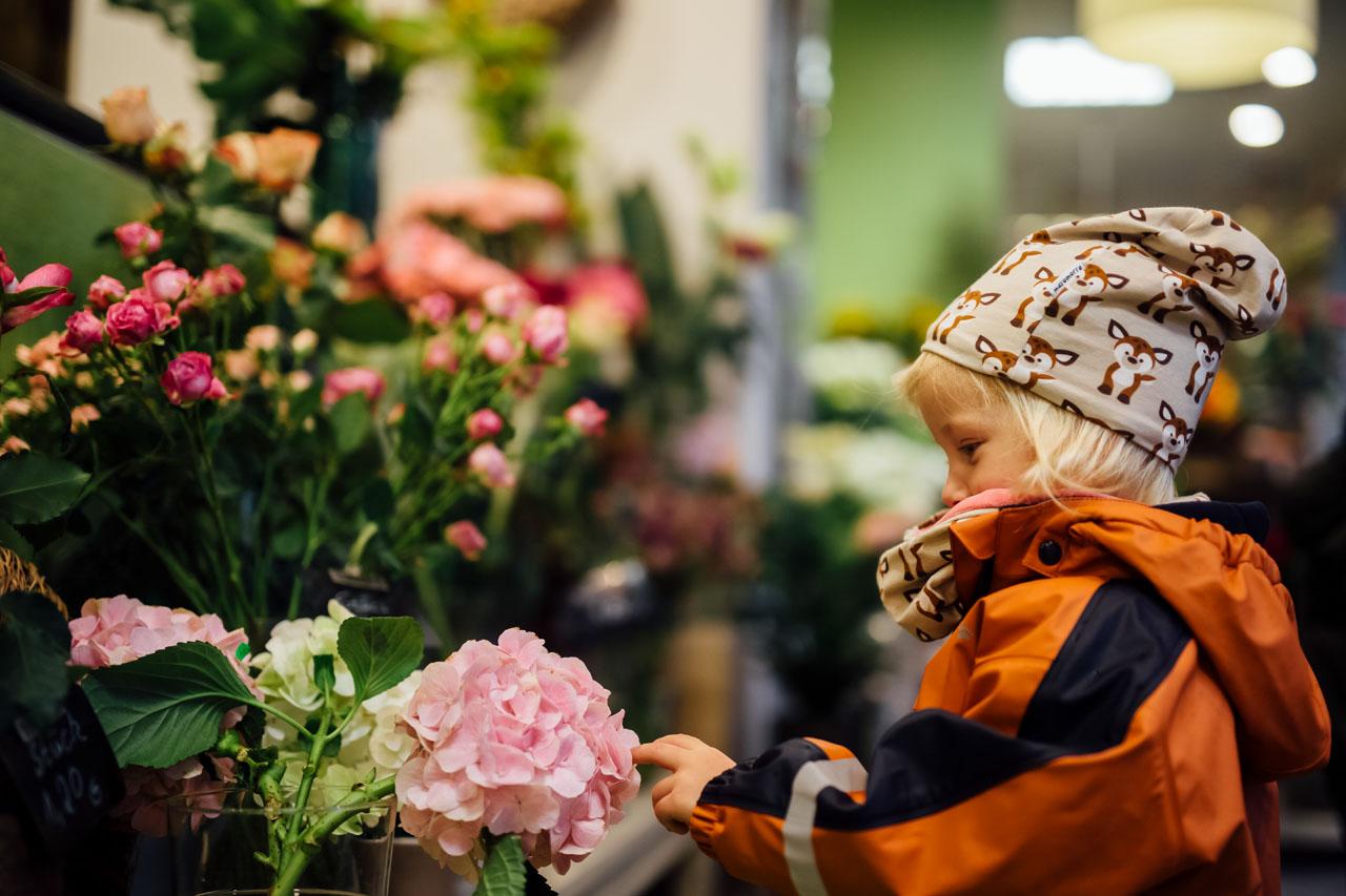 Kind im Blumenladen , das eine Blume berührt