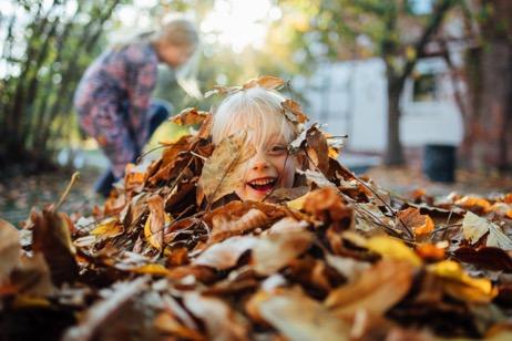 Familienfotograf Preise (6 Stunden)