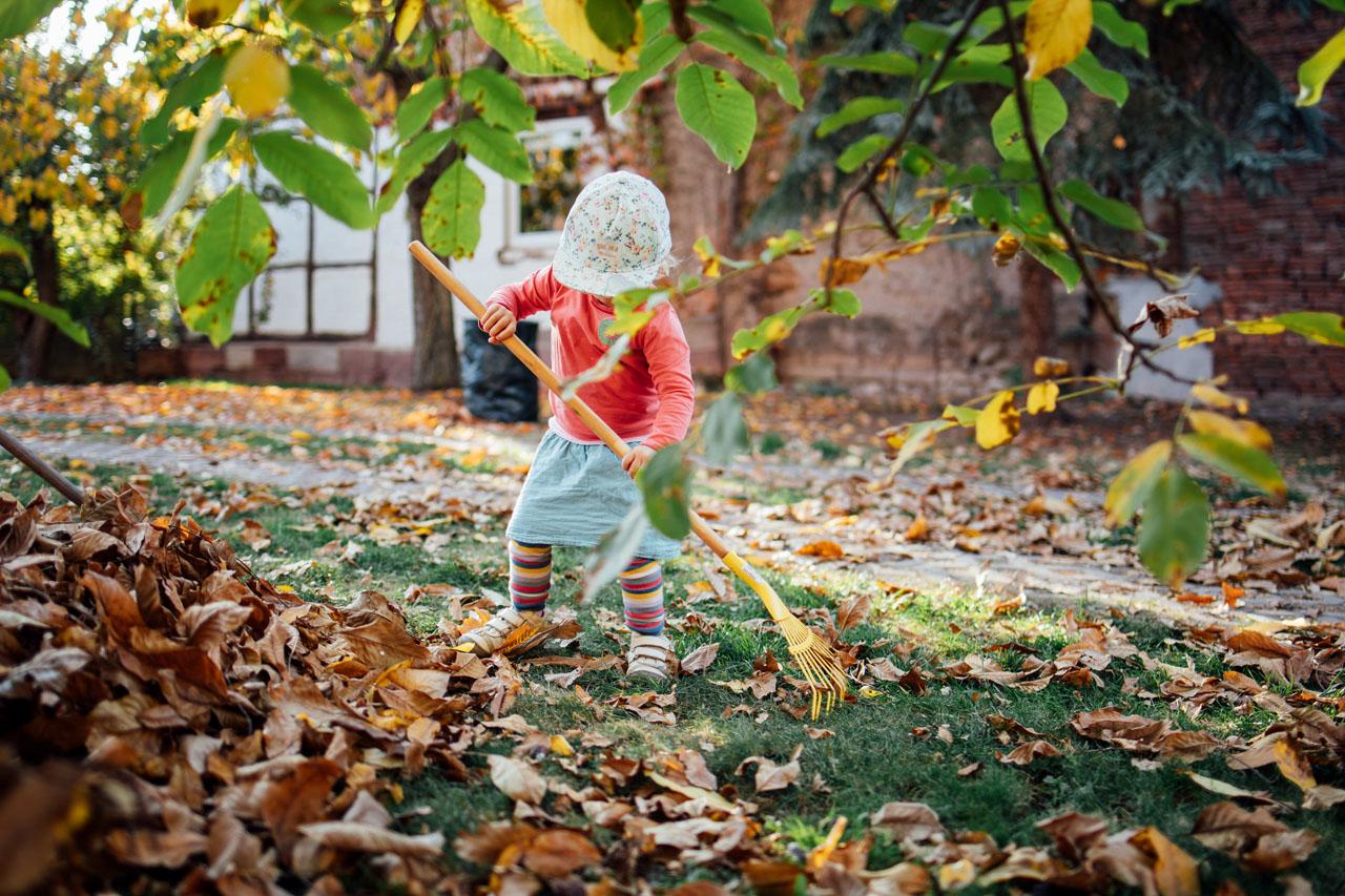Kleines Mädchen macht das Laub mit einem kleinen Rechen weg