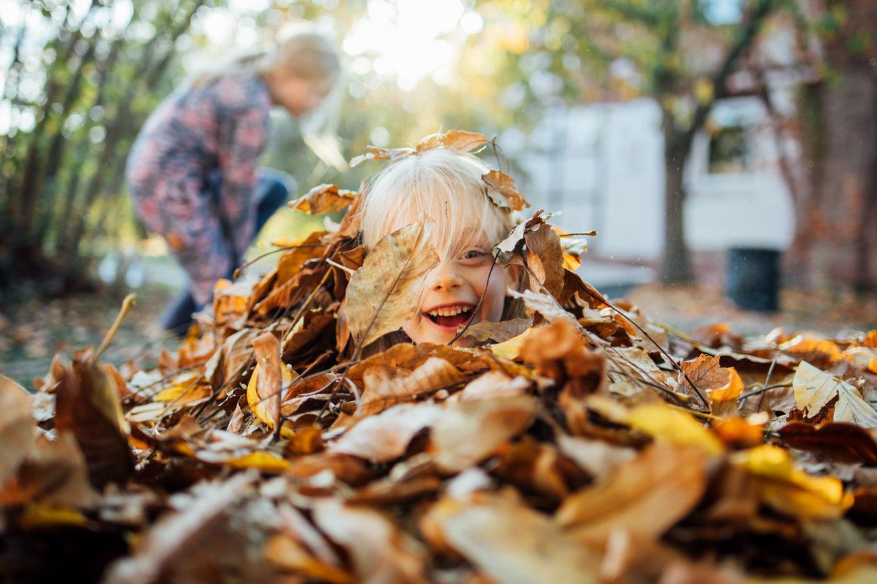 Ein goldener Herbsttag