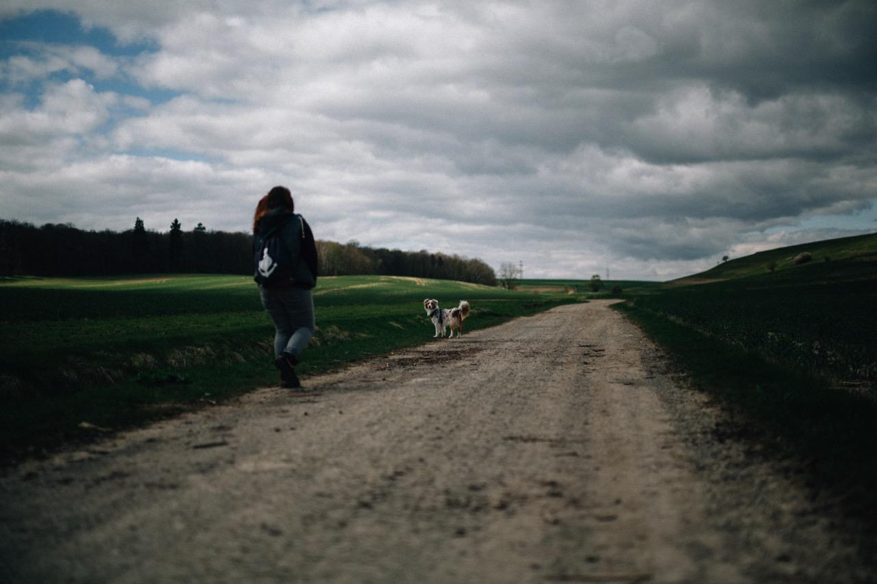 Tierfotografie (01)