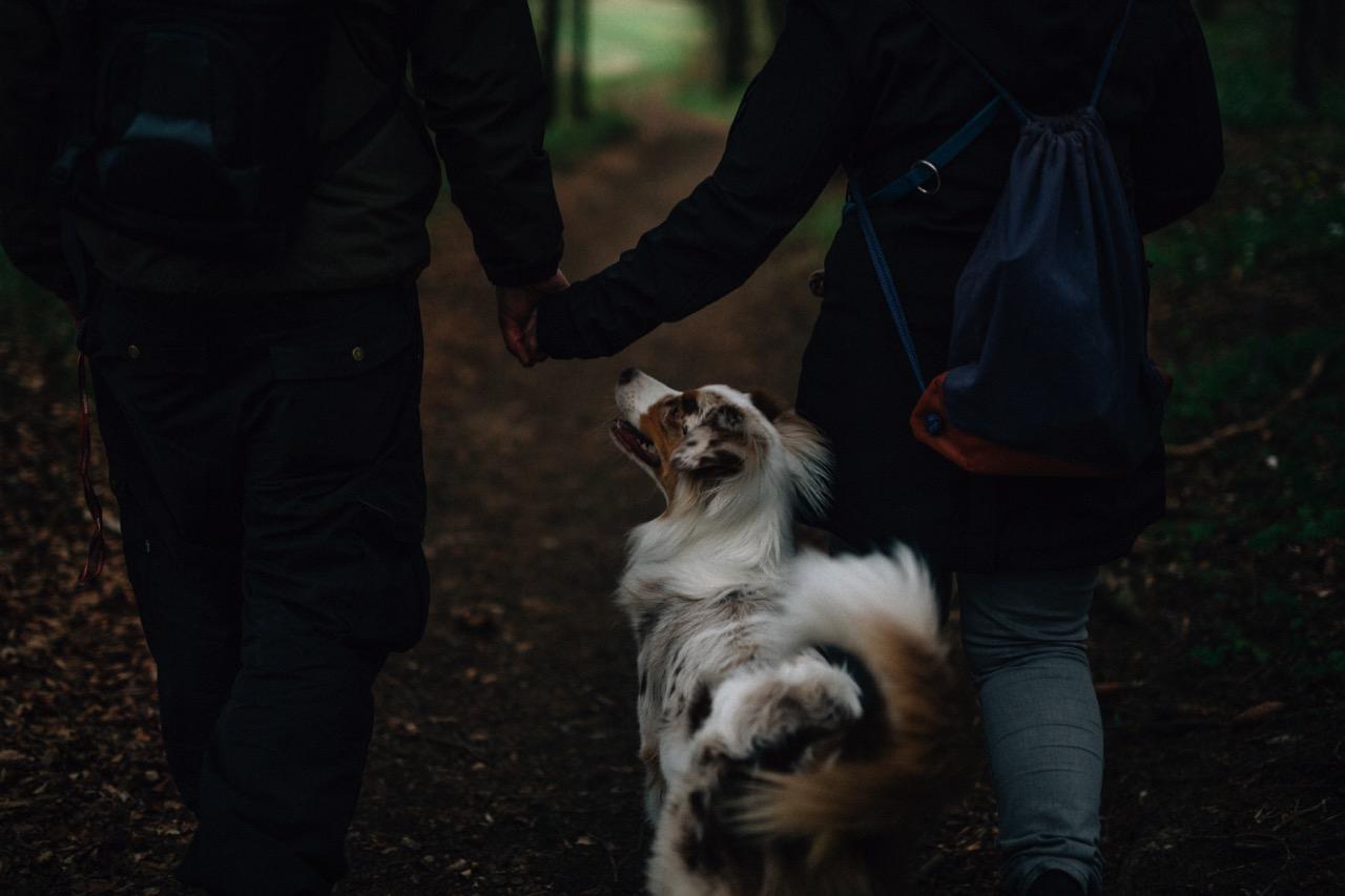 Tierfotografie (23)